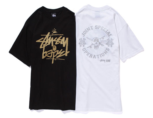 Stussy, Collection Autumn-Winter 2010 / 2011